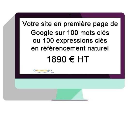 Référencement 1ère page de Google sur 100 mots clés ou expressions clés
